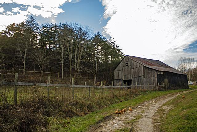 barn-paddock-empty