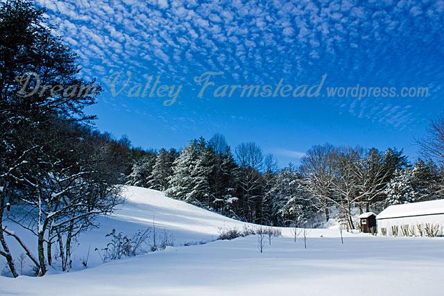 Jan-snow-1