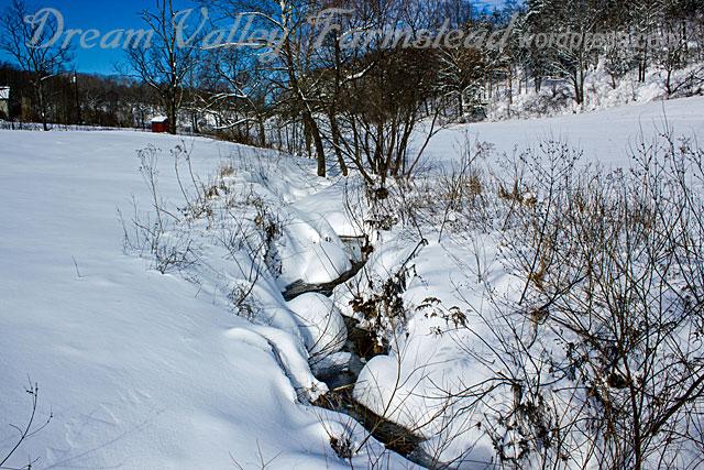 Jan-snow-3