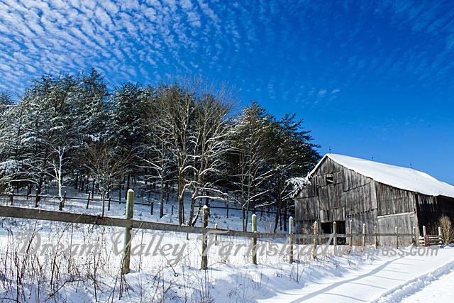 Jan-snow-4.jpg
