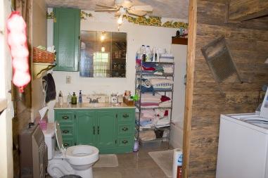 bathroom project 01