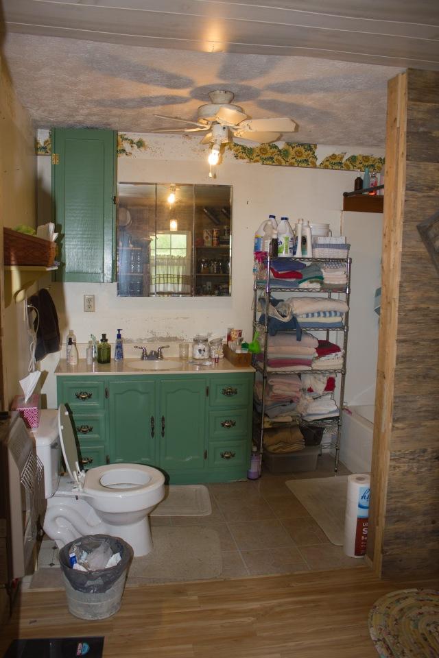 bathroom project 02