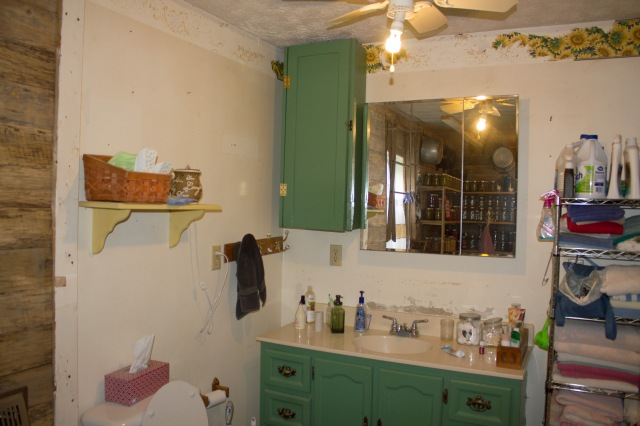 bathroom project 06