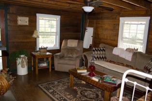 living-room-mini-makeover-05