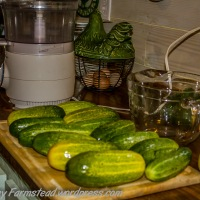 From Cucumbers to Bread & Butter Pickles