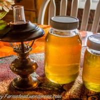 Honey Harvest and a Dream
