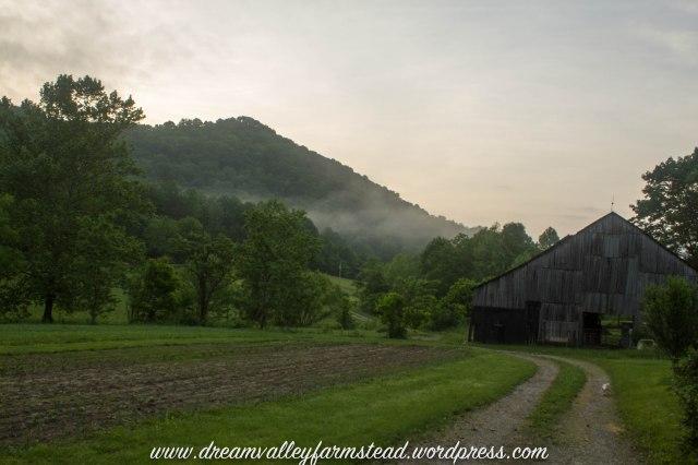 reclaiming barn part deux1