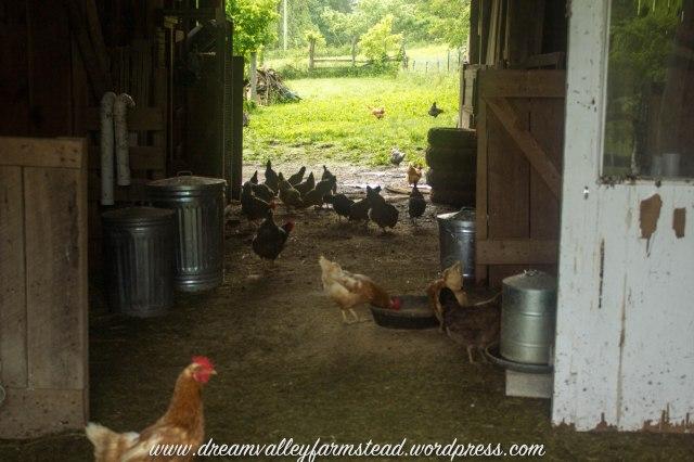reclaiming barn part deux2