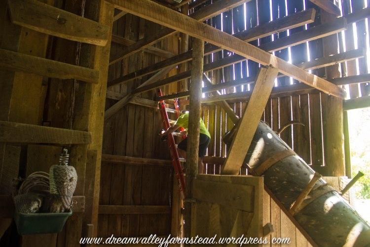 reclaiming barn part deux6