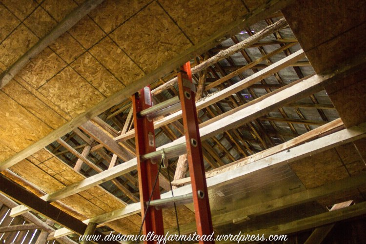 reclaiming barn part deux8
