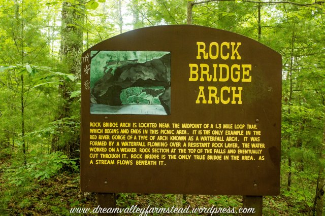 Rock Bridge 1