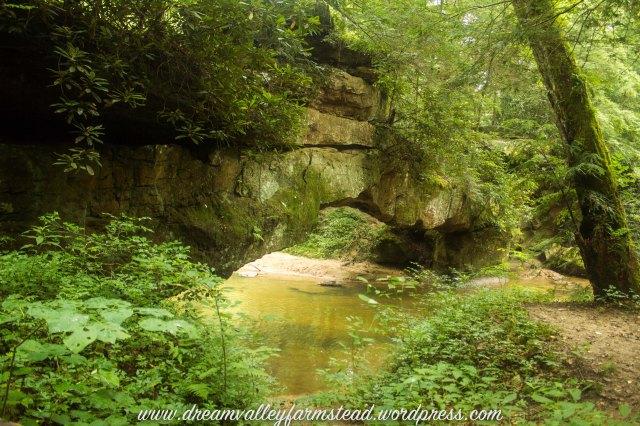 Rock Bridge 28